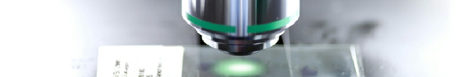 Apex Recorder Zoom Stereomicroscope